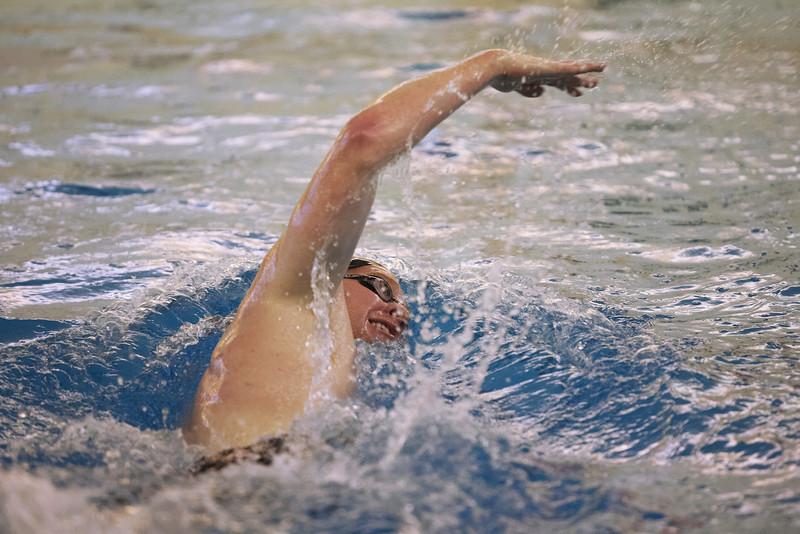 /Users/alexturco/Pictures/The DePauw/November 2008/20081102_ Swimming vs WashU/Jpegs/.ART_7915.jpg
