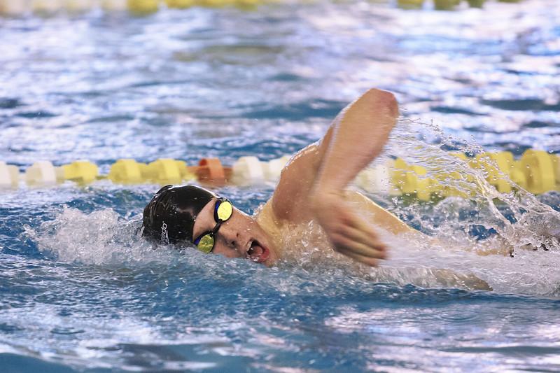 /Users/alexturco/Pictures/The DePauw/November 2008/20081102_ Swimming vs WashU/Jpegs/.ART_7999.jpg