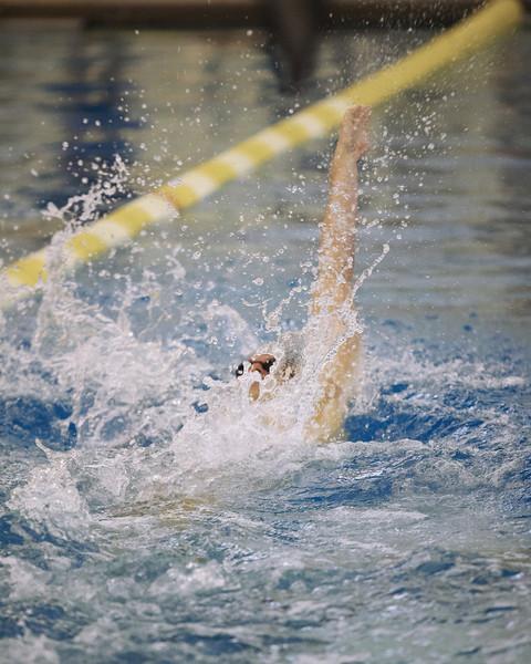 /Users/alexturco/Pictures/The DePauw/November 2008/20081102_ Swimming vs WashU/Jpegs/.ART_8073.jpg