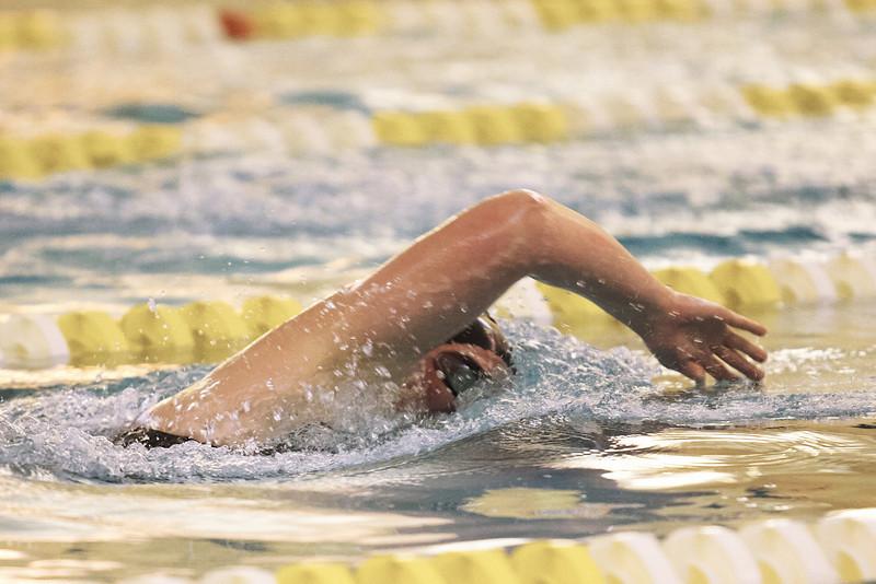 /Users/alexturco/Pictures/The DePauw/November 2008/20081102_ Swimming vs WashU/Jpegs/.ART_7775.jpg