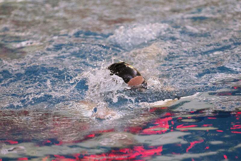 /Users/alexturco/Pictures/The DePauw/November 2008/20081102_ Swimming vs WashU/Jpegs/.ART_7806.jpg