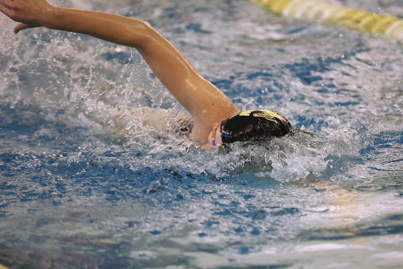 /Users/alexturco/Pictures/The DePauw/November 2008/20081102_ Swimming vs WashU/Jpegs/.ART_7936.jpg