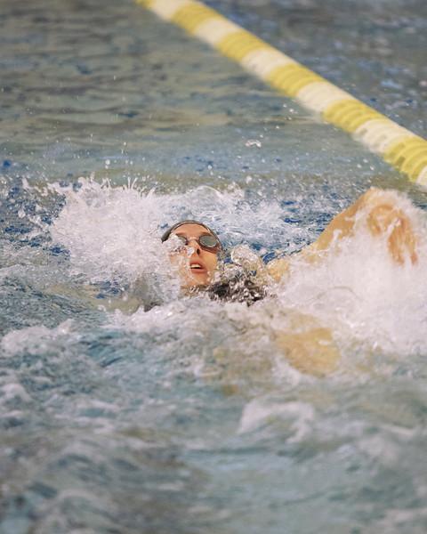 /Users/alexturco/Pictures/The DePauw/November 2008/20081102_ Swimming vs WashU/Jpegs/.ART_8046.jpg