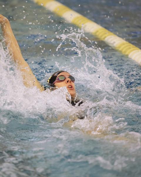 /Users/alexturco/Pictures/The DePauw/November 2008/20081102_ Swimming vs WashU/Jpegs/.ART_8043.jpg