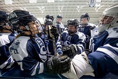 Girl's Hockey vs. Westminster 12.4.19