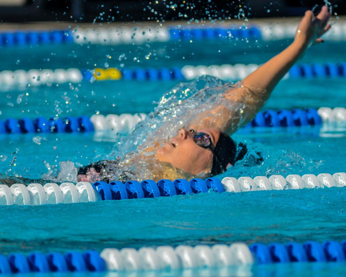 Swim-20151107-282
