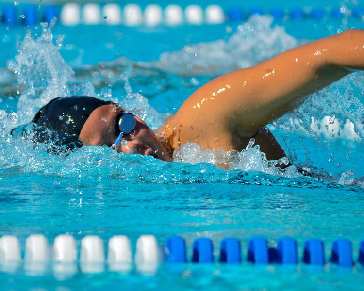 Swim-20151107-157