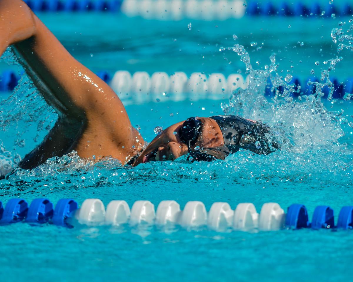 Swim-20151107-328