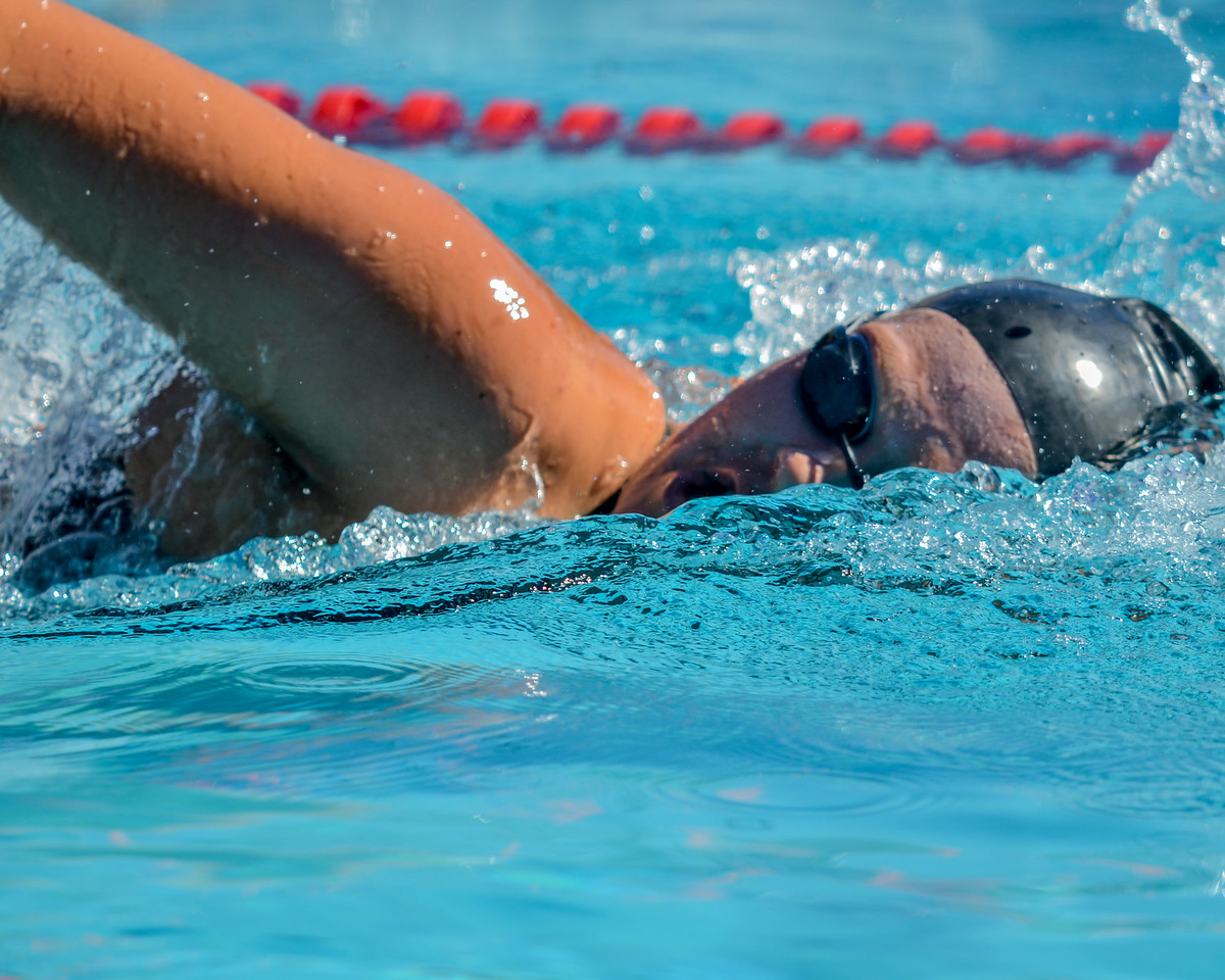 Swim-20151107-64