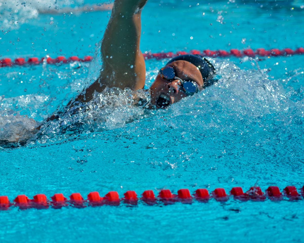 Swim-20151107-242