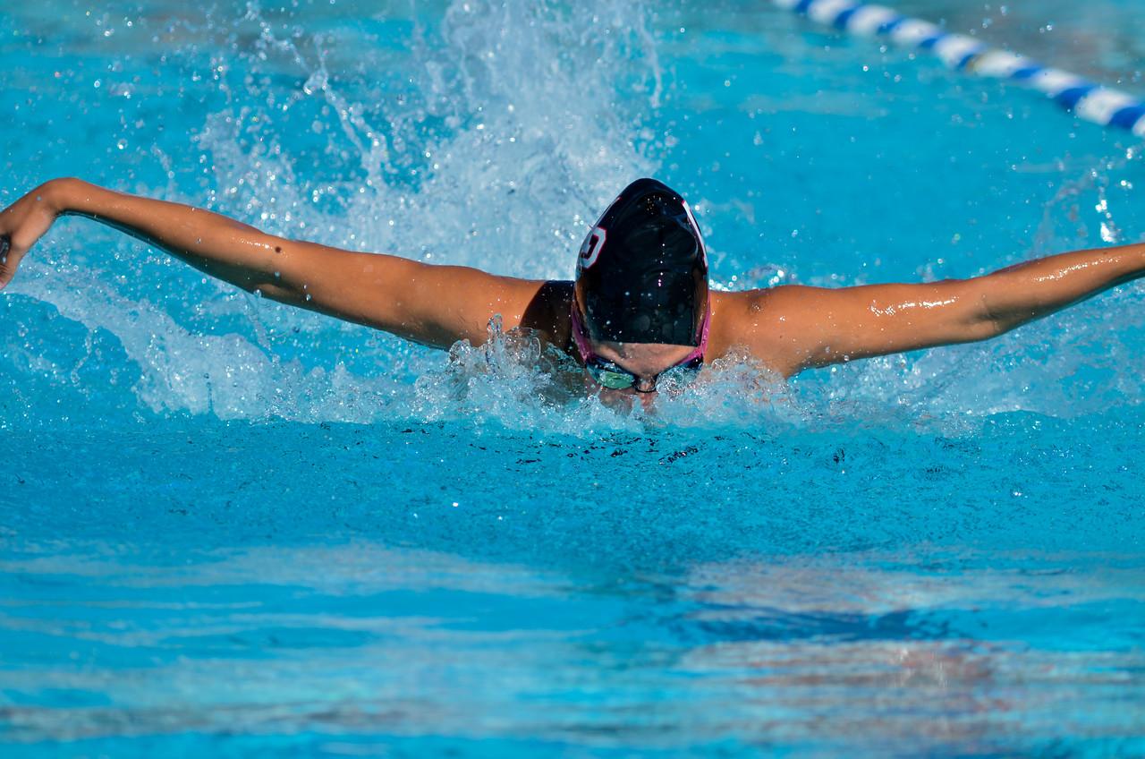 Swim-20151107-45