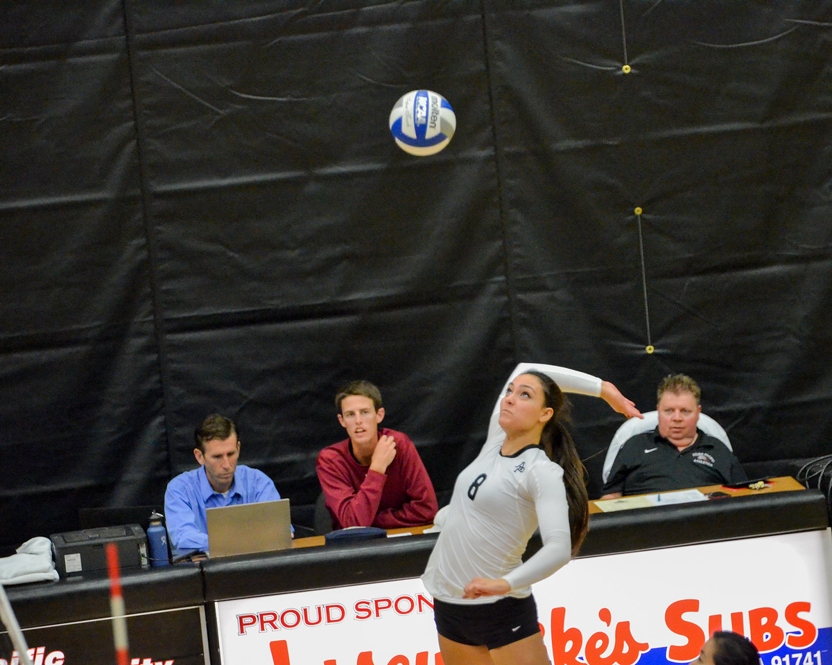 Volleyball-2015110348