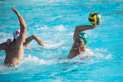 Water-Polo-Men-2017-10-18-2106