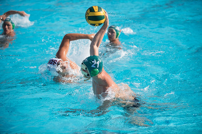 Water-Polo-Men-2017-10-18-2132