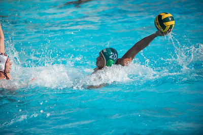 Water-Polo-Men-2017-10-18-2062