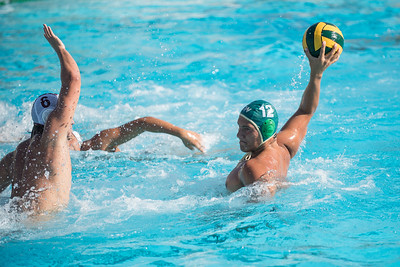 Water-Polo-Men-2017-10-18-2105
