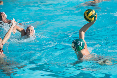 Water-Polo-Men-2017-10-18-2092