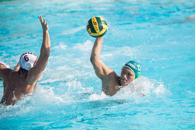 Water-Polo-Men-2017-10-18-2107