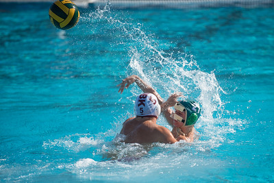 Water-Polo-Men-2017-10-18-2098