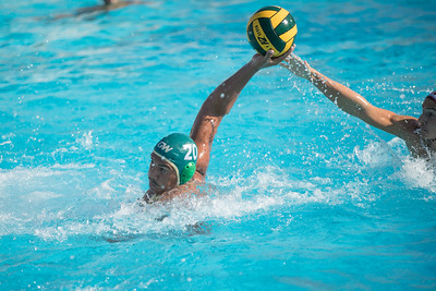 Water-Polo-Men-2017-10-18-2064