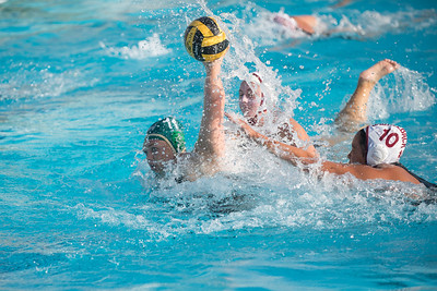 Water-Polo-Women-2017-10-18-2465