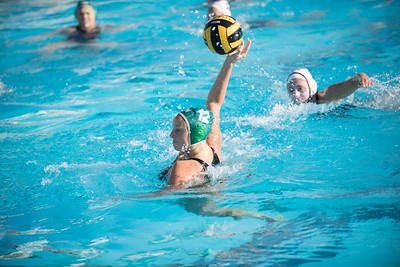 Water-Polo-Women-2017-10-18-2383