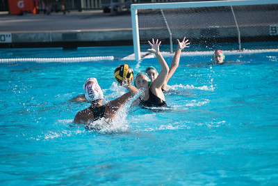 Water-Polo-Women-2017-10-18-2414