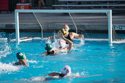 Water-Polo-Women-2017-10-18-2511