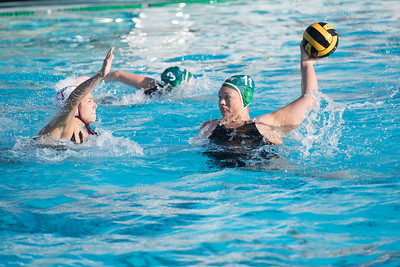 Water-Polo-Women-2017-10-18-2537