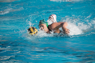 Water-Polo-Women-2017-10-18-2459