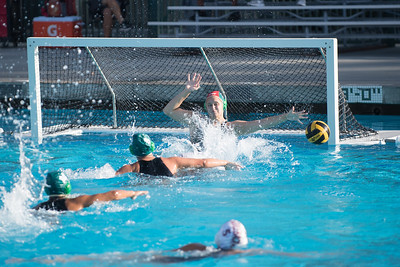 Water-Polo-Women-2017-10-18-2515