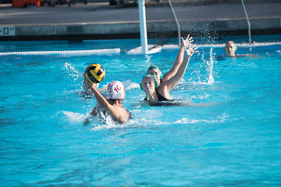 Water-Polo-Women-2017-10-18-2412