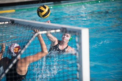 Water-Polo-Women-2017-10-18-2446