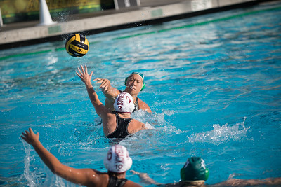 Water-Polo-Women-2017-10-18-2377