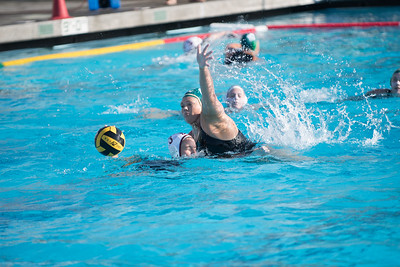 Water-Polo-Women-2017-10-18-2423