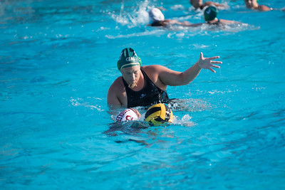 Water-Polo-Women-2017-10-18-2440
