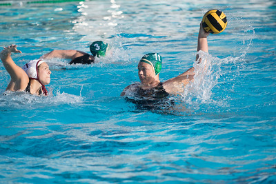 Water-Polo-Women-2017-10-18-2536