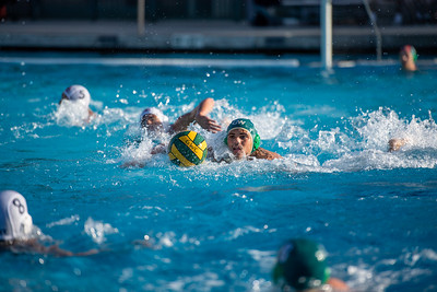 M-Water-Polo-2018-10-24-9324