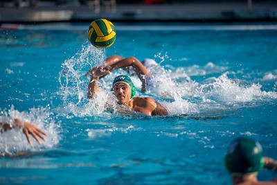 M-Water-Polo-2018-10-24-9328