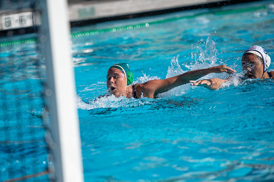 W-Water-Polo-2018-10-24-8864