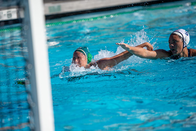 W-Water-Polo-2018-10-24-8863