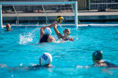 W-Water-Polo-2018-10-24-8902
