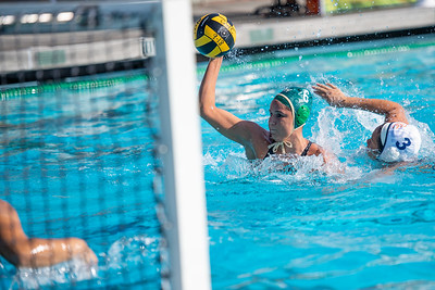 W-Water-Polo-2018-10-24-8872