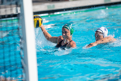 W-Water-Polo-2018-10-24-8867