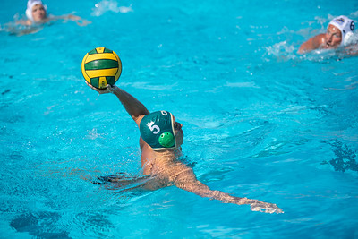 Water-Polo-M-2019-09-18-0599