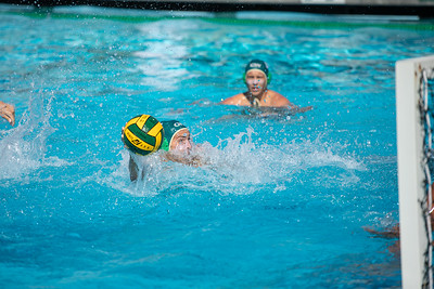 Water-Polo-M-2019-09-18-0684