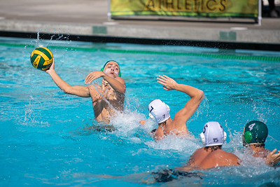 Water-Polo-M-2019-09-18-0695