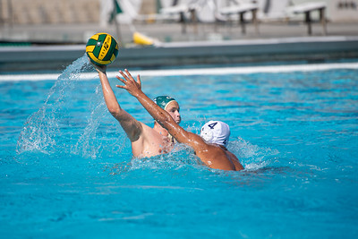 Water-Polo-M-2019-09-18-0673