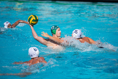 Water-Polo-M-2019-09-18-0679