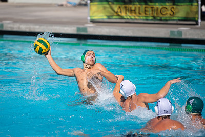 Water-Polo-M-2019-09-18-0694